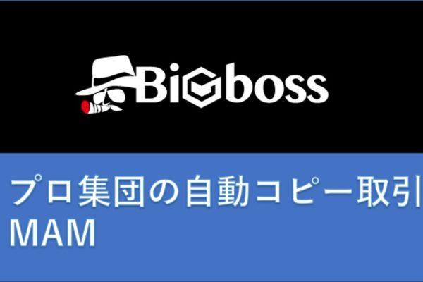 海外FXのBigBoss(MAM)とは?