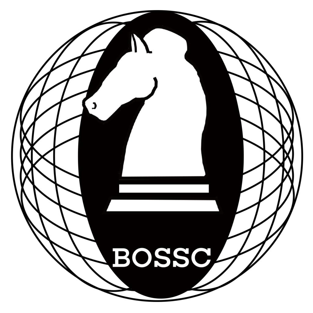 BLLP(ベルコインプラス)をBOSSC(ボスコイン)に変換する方法